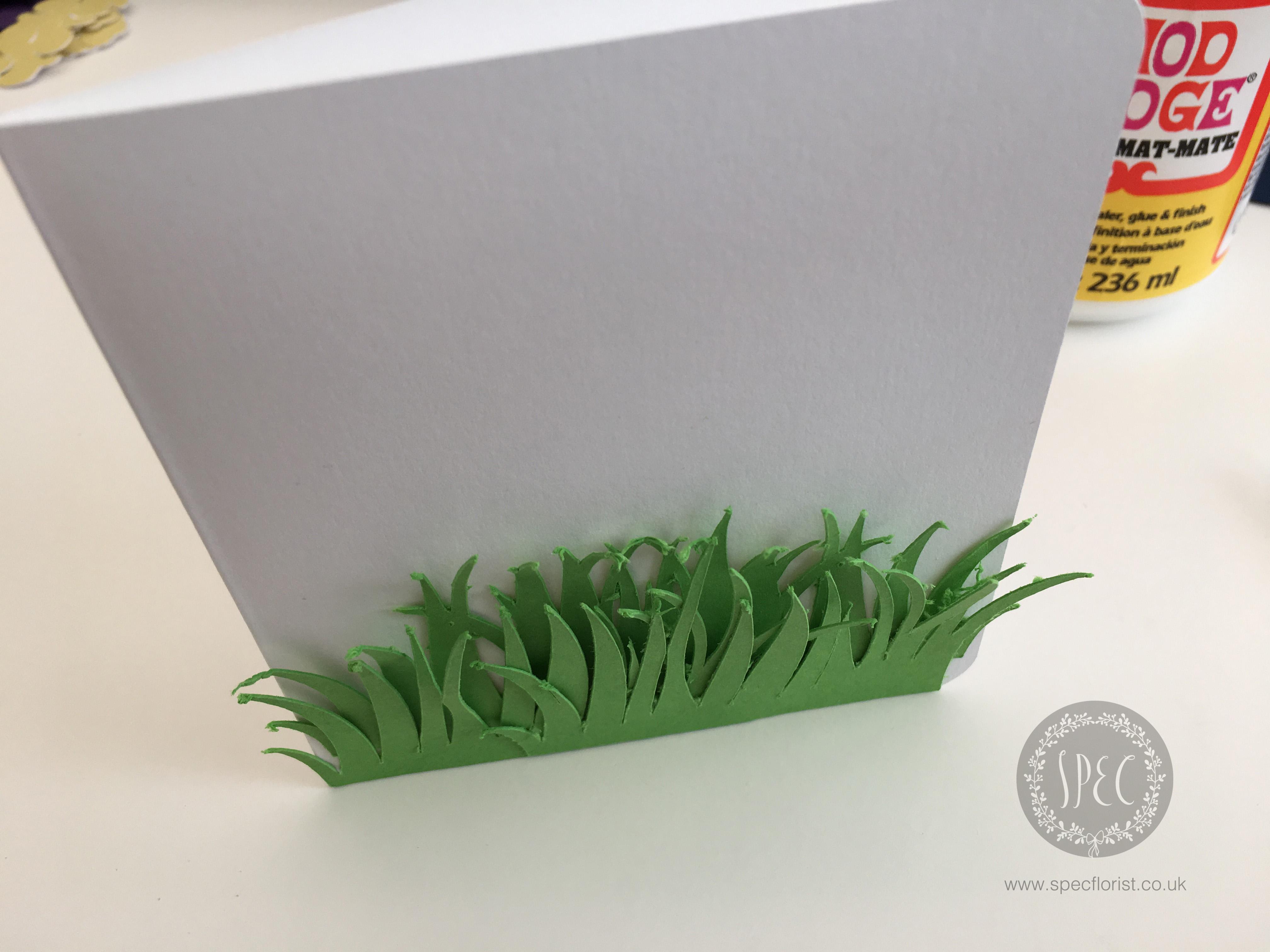 Paper grass