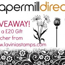 Win a £20 Gift Voucher from Lavinia Stamps
