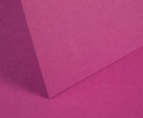 Raspberry Pink Plain Card - Set Swatch