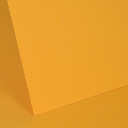 Gold Plain Card