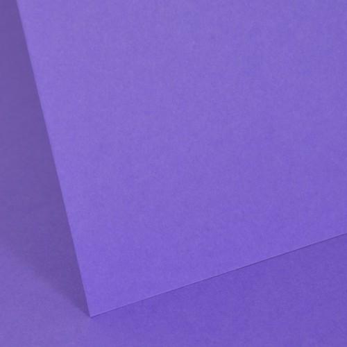 Intensive Lilac Plain Card