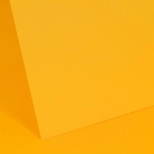 Sunflower Plain Card