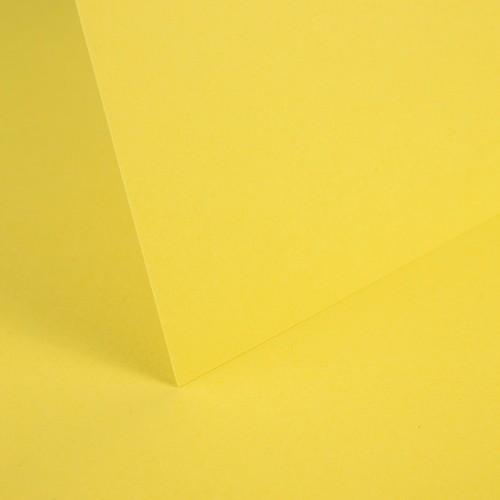 Daffodil Yellow Smooth Card - Set Swatch