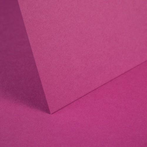 Raspberry Pink Plain Card - Set Swatch